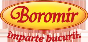 Web design Boromir Pan Café