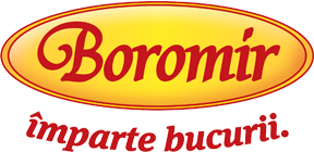 Web design Boromir Prod S.A.