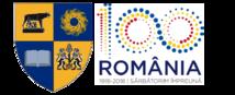 Web design Cluj County Council