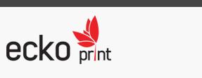 Web design Ecko Print