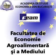 Web design Economic College Delta Tulcea