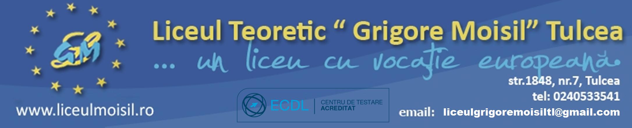 Web design Liceul Teoretic Grigore Moisil