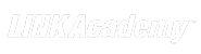 Web design LINK Academy - Timișoara