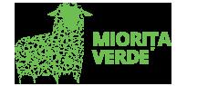 Web design Miorita verde
