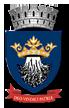 Web design Primăria Municipiului Brașov