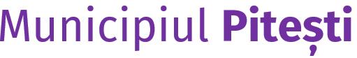 Web design Primăria Pitești