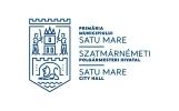 Web design Satu Mare