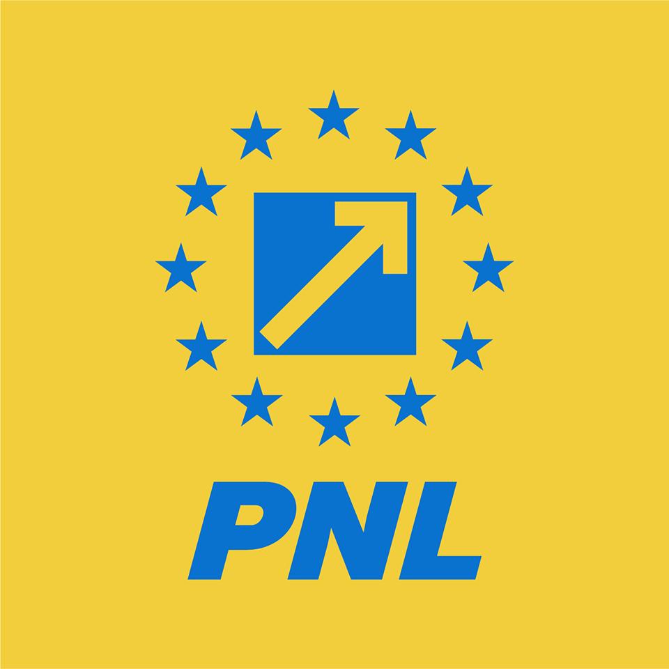 Web design Sediu PNL Sector 3