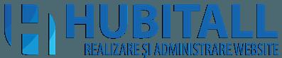 Web design servicii web Timisoara
