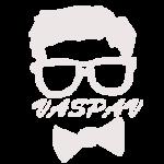 Web design VasPav IT Consulting