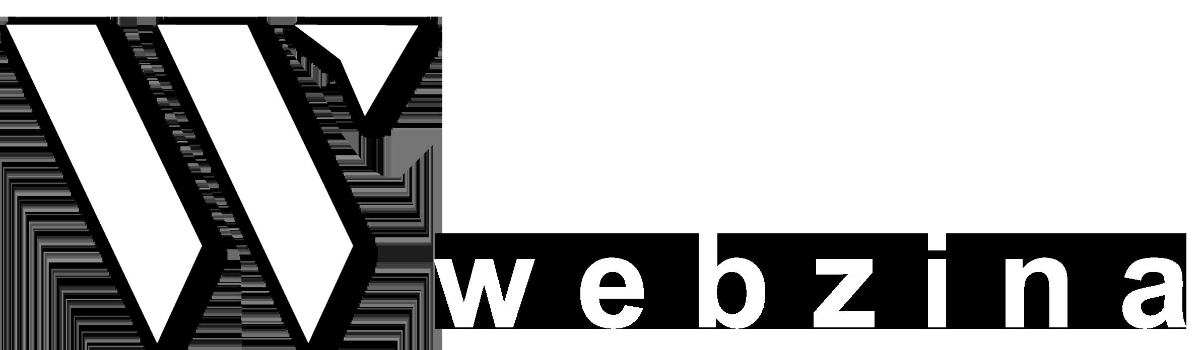 Web design Webzina - Brasov WebDesign
