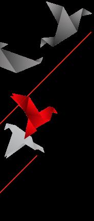 Web design xStock